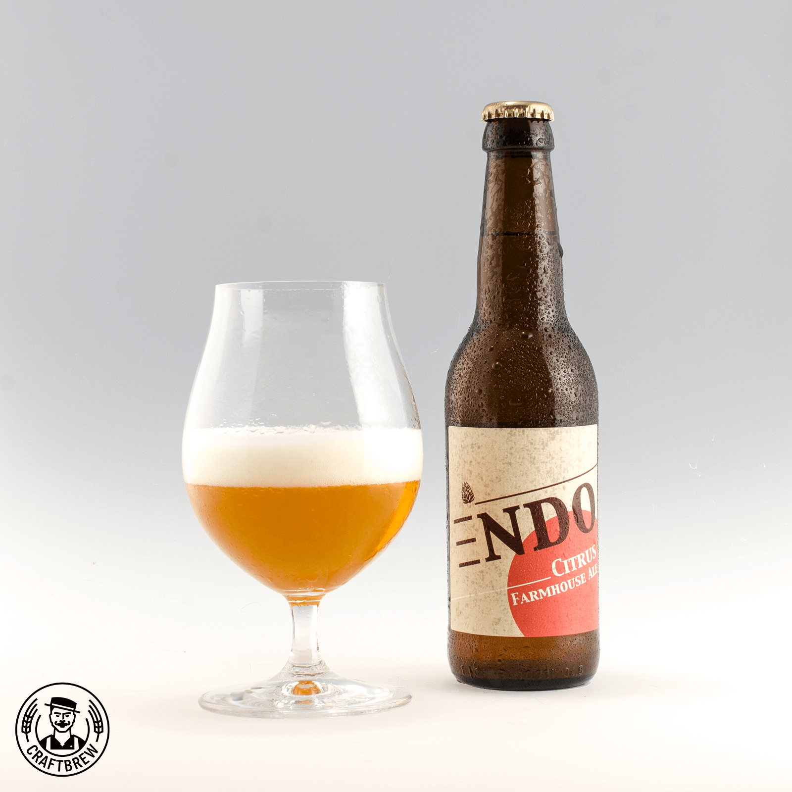 Citrus Farmhouse Ale - Endo Bier